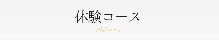 体験コース trial course